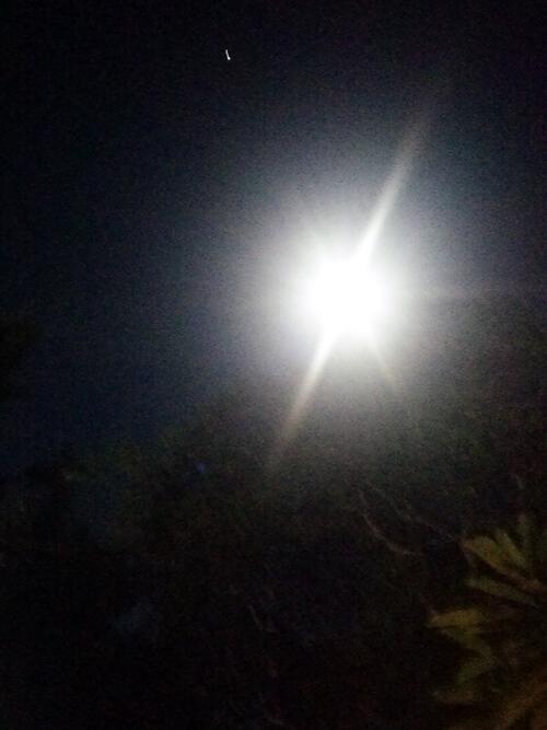 nature-worship バリの満月で心身をリセット☆Purnama di BALI