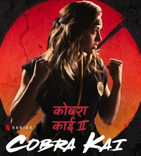 Cobra Kai S02 Hindi Complete Download 720p WEBRip