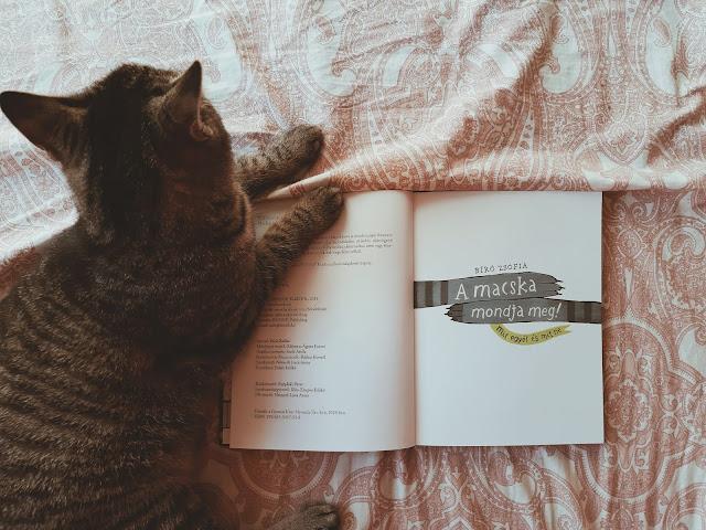 Bíró Zsófia – A macska mondja meg! [Mit egyél és mit ne] könyv belső illusztrációja, megjelent a BOOOK Kiadó gondozásában, Kátya cica közreműködésével