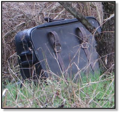 Der Koffer im Wald