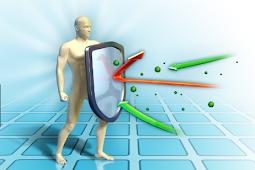 5 Makanan Sehat Untuk Meningkatkan Sistem Imunitas