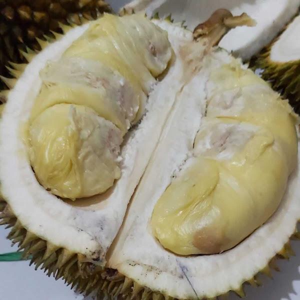 Musim Durian, Ingin Singgah Lagi Ke Kampung Durian Lereng Kelud-Kediri