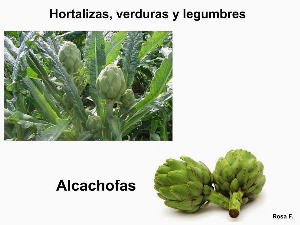 Maestra De Primaria Hortalizas Verduras Y Legumbres Para Imprimir