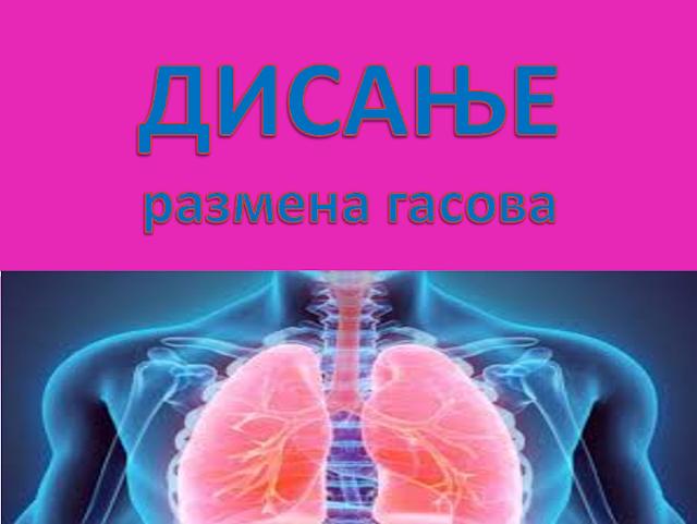 POWERPOINT - BIOLOGIJA