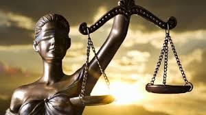 Hukuk bölümü nedir