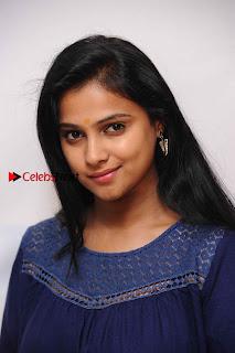 Kannada Actress Kavitha Stills at Srinivasa Kalyana Movie Press Meet  0002.jpg