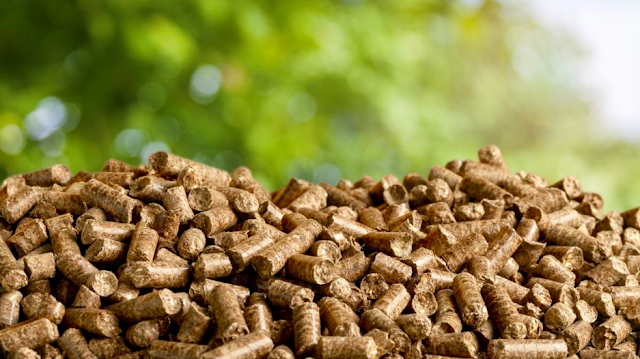 Qué es la biomasa