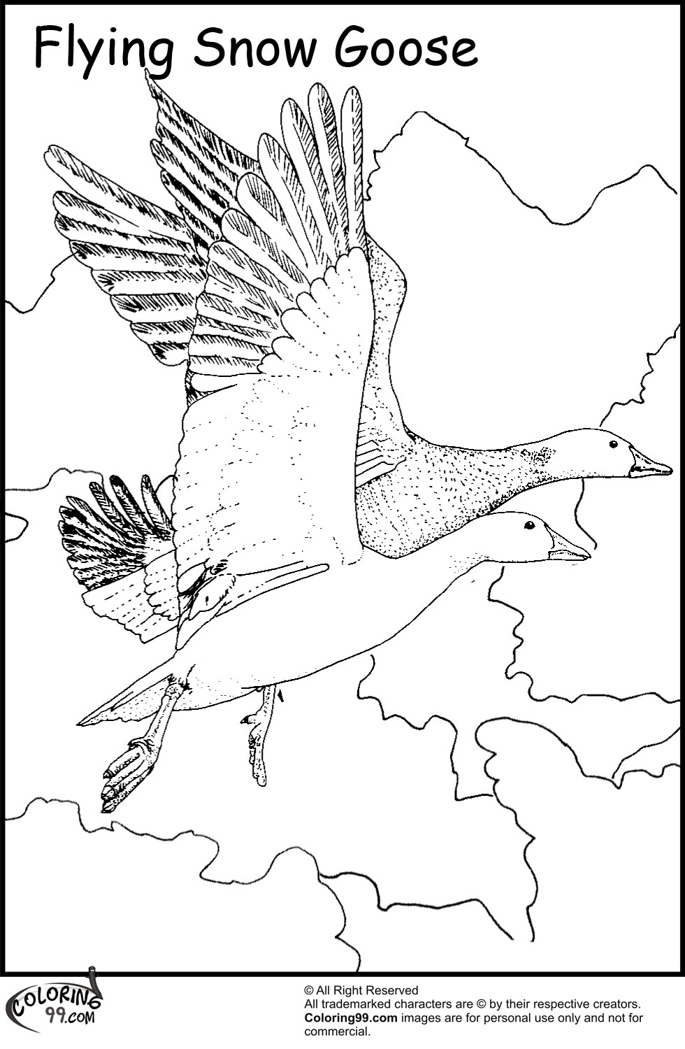 geese coloring pages for kids - photo#30