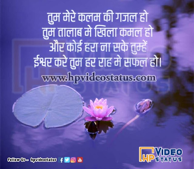तुम मेरे कलम की   Kamal Lotus Shayari Status