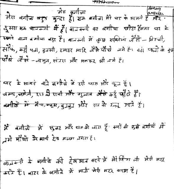 Essay on mera bagicha in hindi for class 2