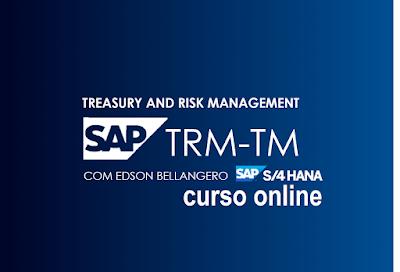 Curso SAP S/4HANA TRM-TM