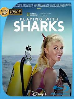 Jugando con tiburones (2021) Documental [1080p] Latino [GoogleDrive] PGD