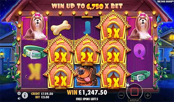 Main Gratis Slot Indonesia - The Dog House (Pragmatic Play)