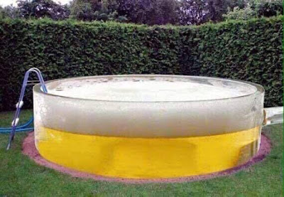 This is my kind of pool - SHARE if you agree