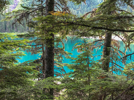 Avalanche Lake color