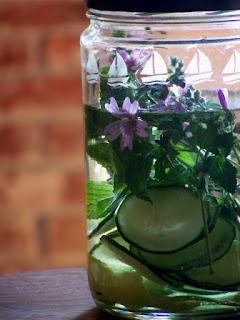 Acqua detox con cetriolo, menta e malva selvatica