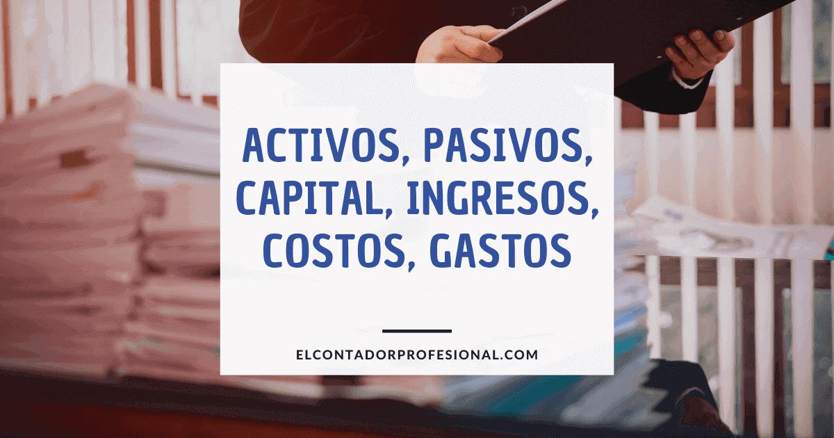 activos pasivos capital ingresos costos gastos