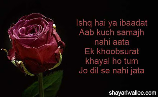 ishq ki shayari in hindi