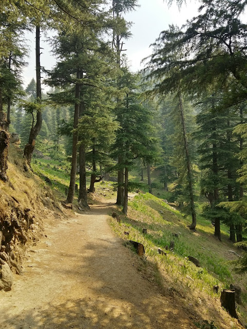 Nature Trails in Tirthan Valley