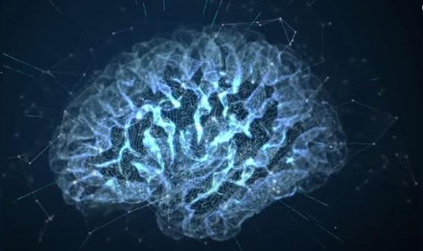 مناطق التأثير على خلايا الدماغ