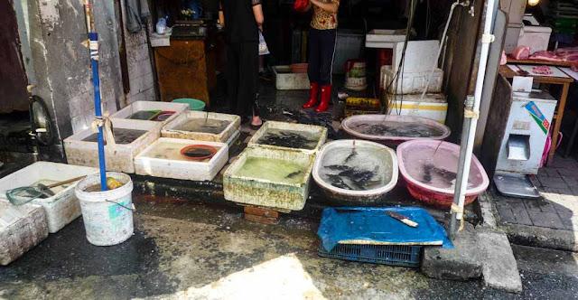 Mercados Shanghai