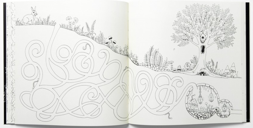 Secret Garden An Inky Treasure Hunt And Coloring Book And