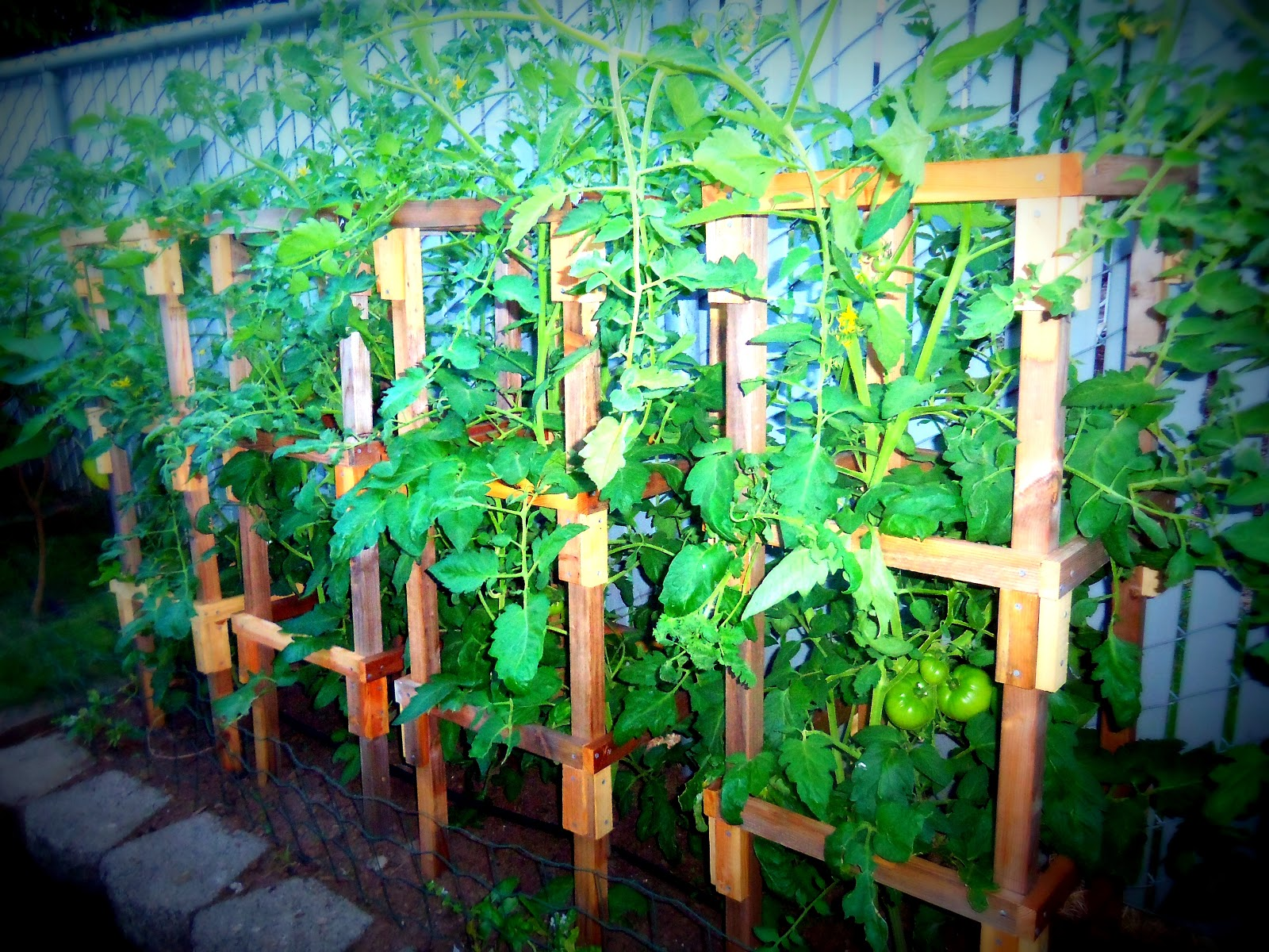 Great Danas Workshop How To Build Your Own Sturdy Tomato Cage