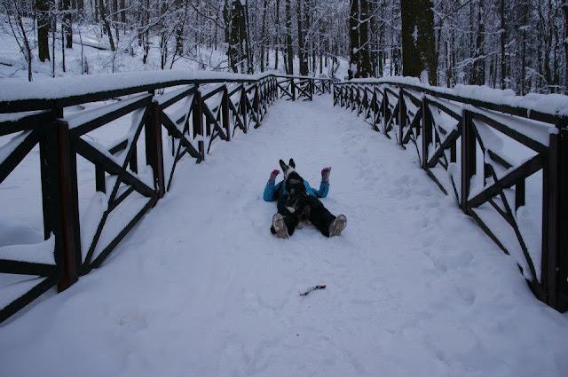 jak przygotować psa do wyjazdu w góry, góry z psem, podróże z psem