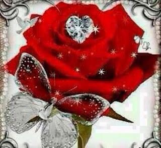 صورة وردة جورية مع قلب وفراشة
