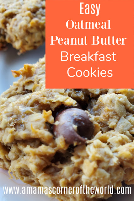 Pinnable Image for a Recipe for Oatmeal Peanut Butter Breakfast Cookies