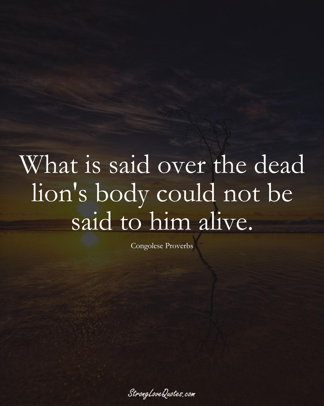 What is said over the dead lion's body could not be said to him alive. (Congolese Sayings);  #AfricanSayings