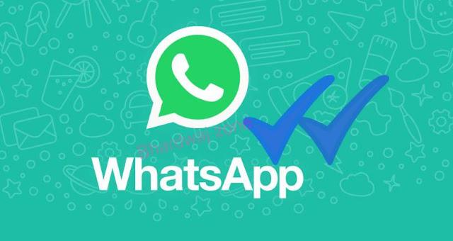 Hide Whatsapp blue tick
