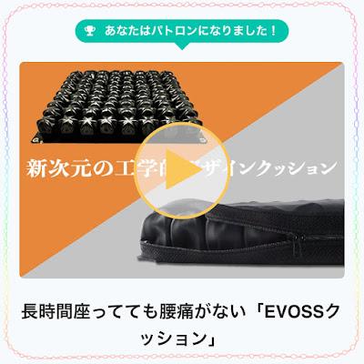 EVOSSクッションイメージ