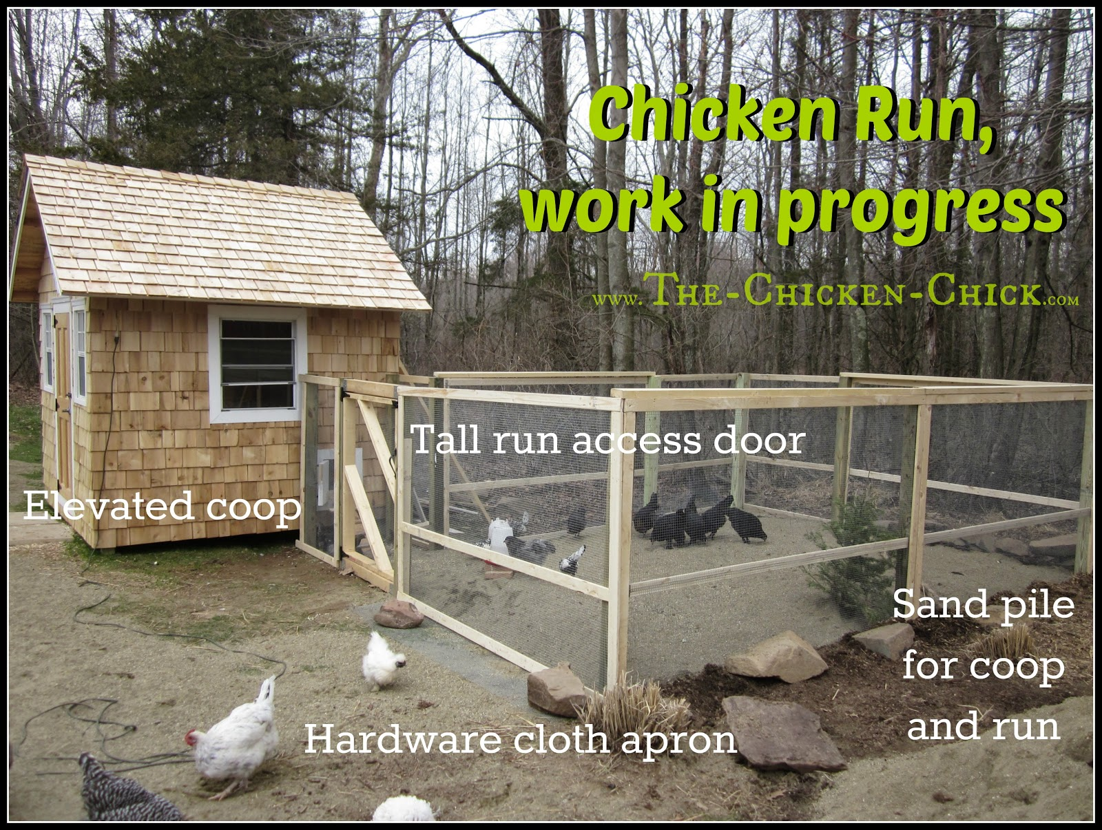 The chicken chick chicken coop design essentials for Chicken run plans