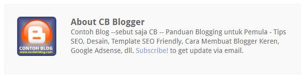 Cara Memasang Author Box di Bawah Postingan Blog