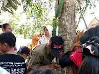 Heboh Dan Seram Pohon di Jember Keluarkan Suara Perempuan Menangis
