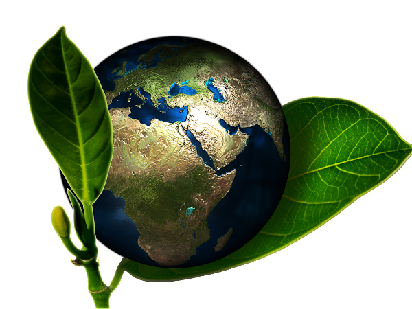 How to Have an Earth-Friendly Lifestyle