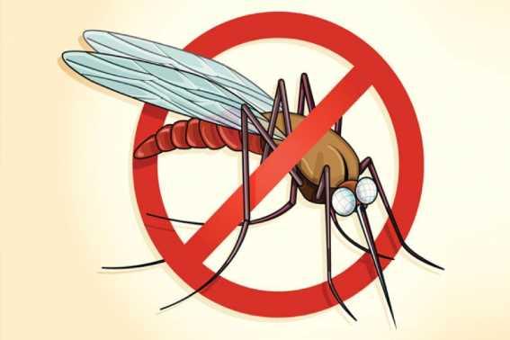 Gejala Malaria Ternyata Bervariasi