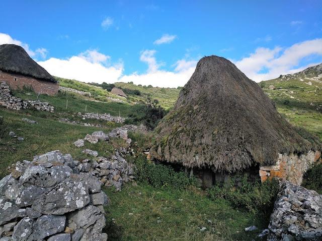 Los teitos se protegen con pequeños cercados de piedra