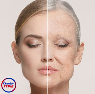 Facts About Skin Aging Need to Know