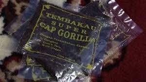 Tembakau Gorilla dan Bahayanya