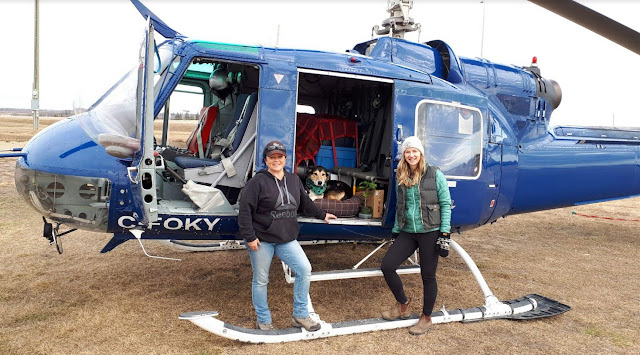 Dog Holly in the helicopter, and Trina Moyles and the female pilot ready to go. The Writer's Pet on Lookout.