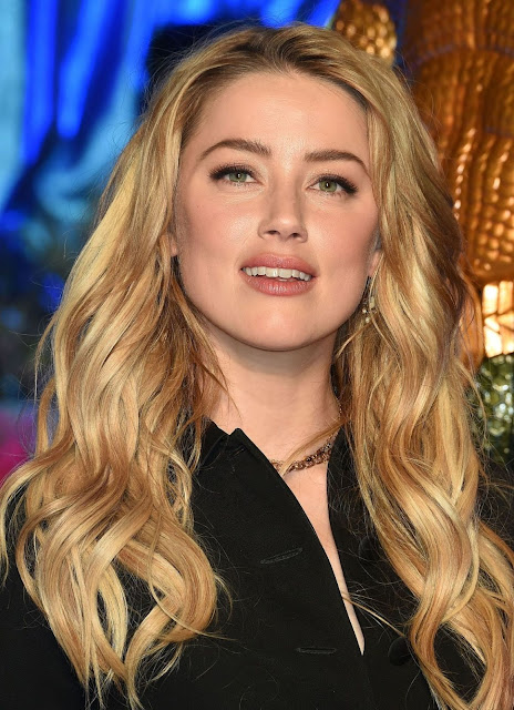 Amber Heard Net Worth, Life Story, Business, Age, Family Wiki & Faqs
