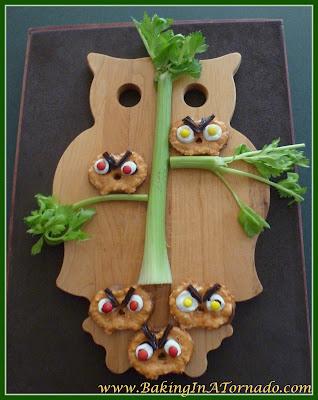 Angry Owl snacks | Recipe developed by www.BakingInATornado.com | #recipe #snack