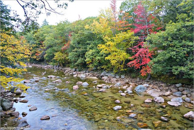Río Saco a su Paso por Bartlett Covered Bridge