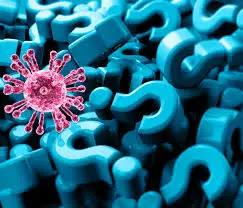 What Is The Cat Q Virus?