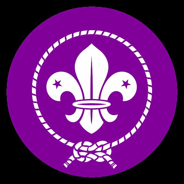 scouts logo vector
