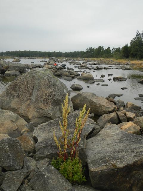 Valtavia lohkareita lahden rannalla