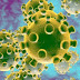Dịch bệnh do virus corona tại sao lại rất nguy hiểm với người Việt?