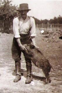 Auguste Bourgeois et le sanglier à Cheverny